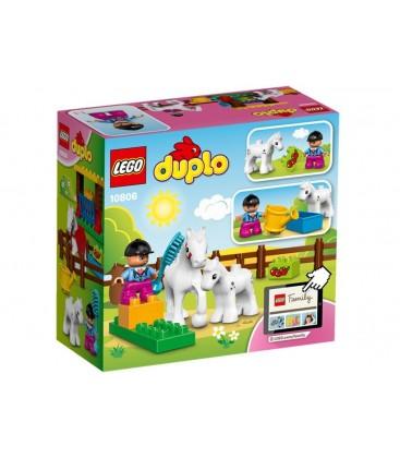 LEGO® Cai LEGO DUPLO [10806]